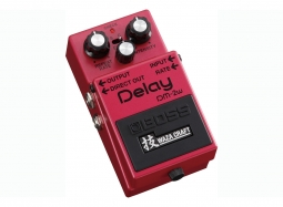BOSS DM-2W Custom Delay