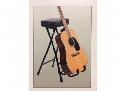 StagePlayer Metal Stool with Guitar Stand & Foot Rest