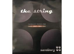 Sandberg the string 40-100