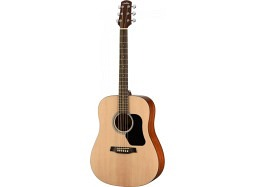 Walden Bundle D350 Westerngitarre Standard Fichte/Mahagoni